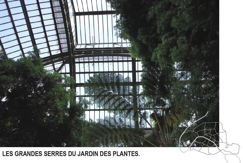 Hors du temps blog voyage lifestyle paris - Serres jardin des plantes ...