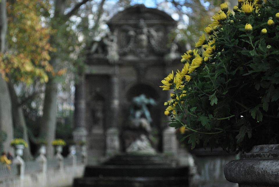 fontaine-medicis-fleur