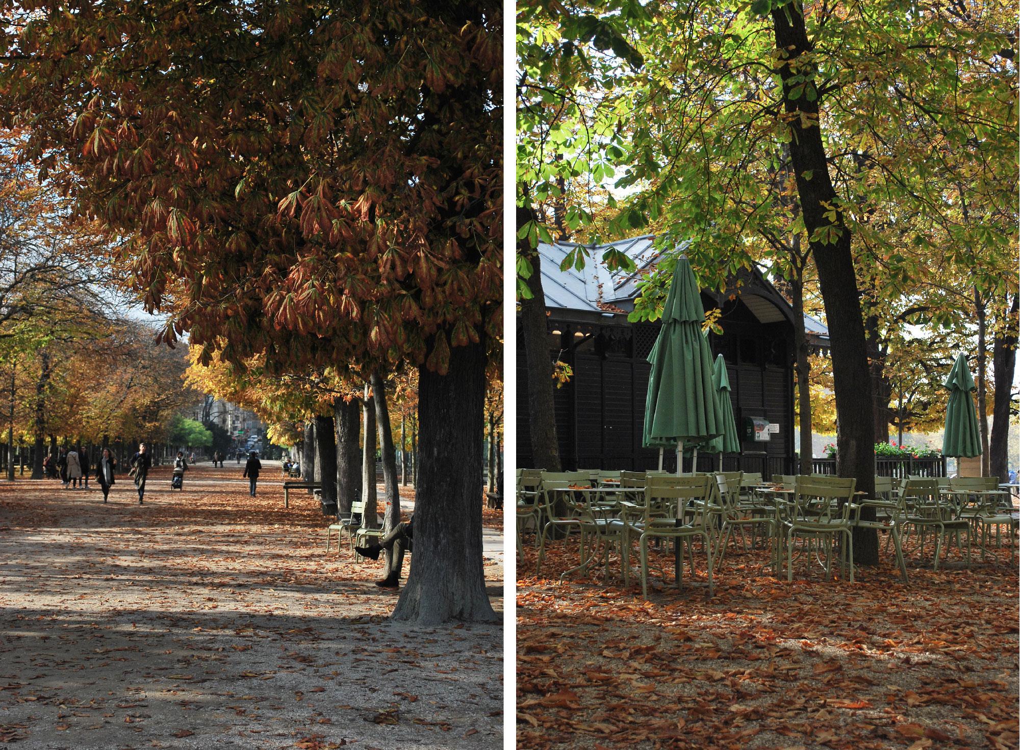 jardin-luxembourg-automne-01