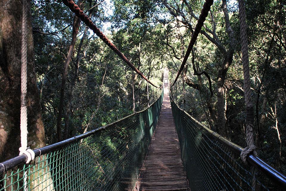pont suspendu instaram