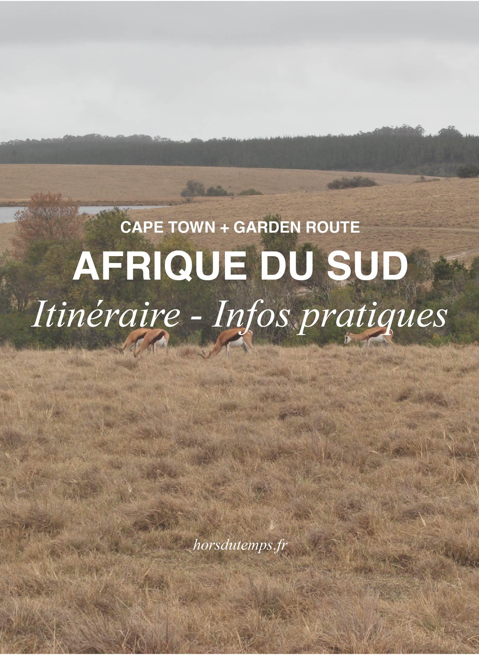 infos pratiques afrique du sud