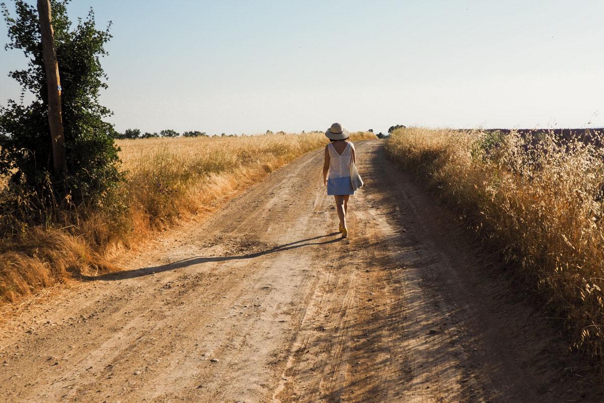 fille champs de blé