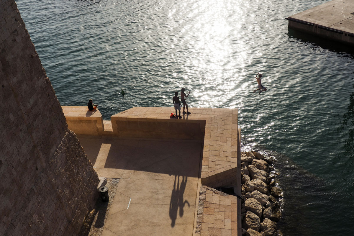 mucem plongeon